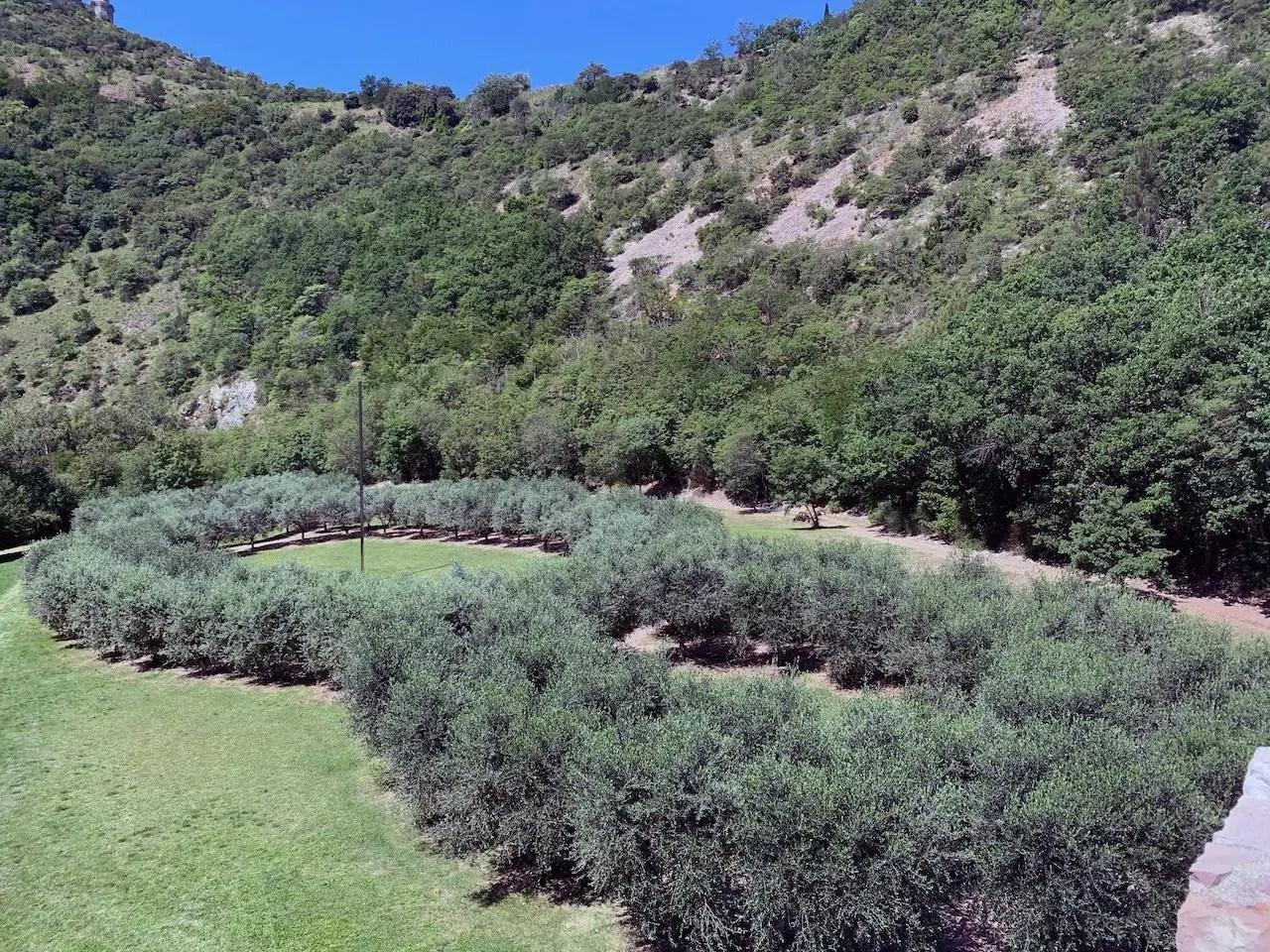 Terzo Paradiso Assisi