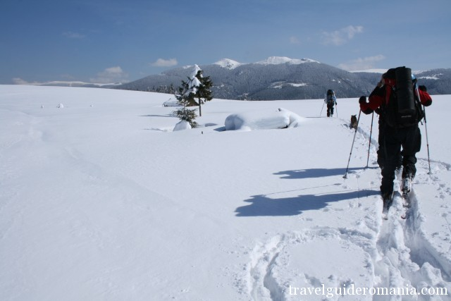 Off-track skiing in Apuseni Nature Park