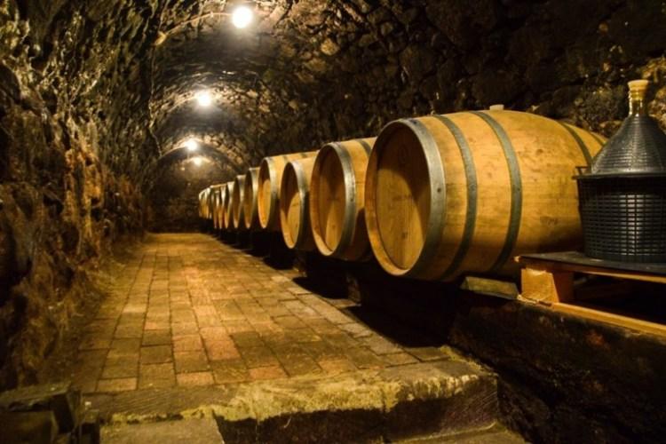 Wine tasting in Tokaj - Hungary