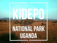 Effortless Way Of Getting To Kidepo Valley national Park Uganda