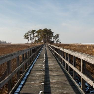 Boardwalk at Eastern Neck