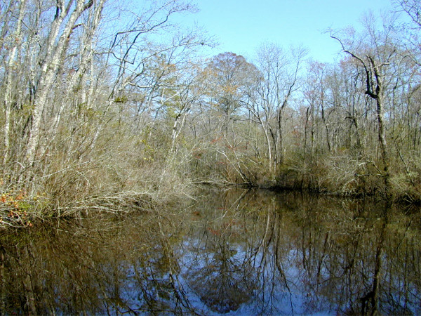 Pocomoke River  - Worcester County
