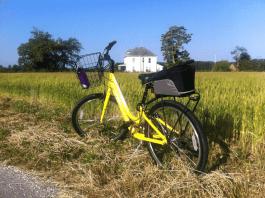 Trek Shift 1 bike