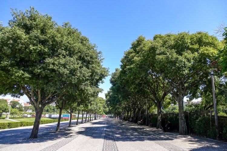 Park Eduardo VII