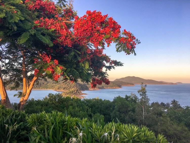 Hamilton Island, travelhelix, Australia, inspiration, sunset