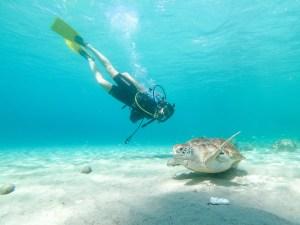 Playa Grandi Diving Curacao
