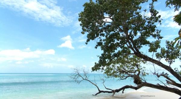 Radha nagar beache, beautiful beaches of india, indian beaches, andaman