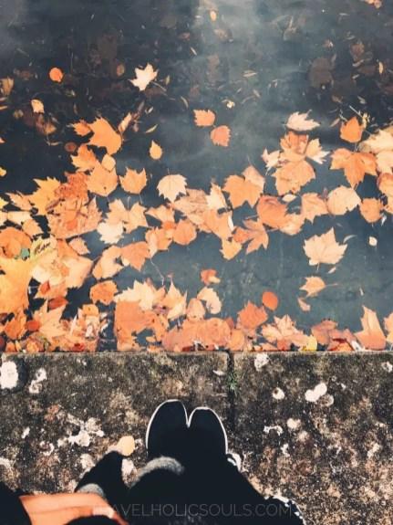 Perchè visitare Dublino in autunno?