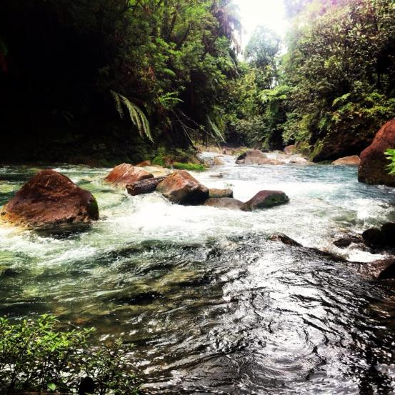 blue river hot springs costa rica