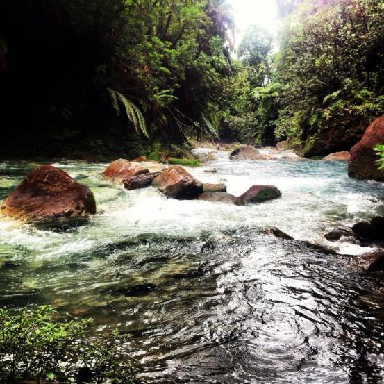 blue river hot springs costa rica