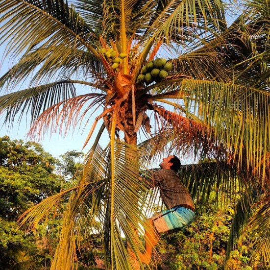 expat advice moving to costa rica