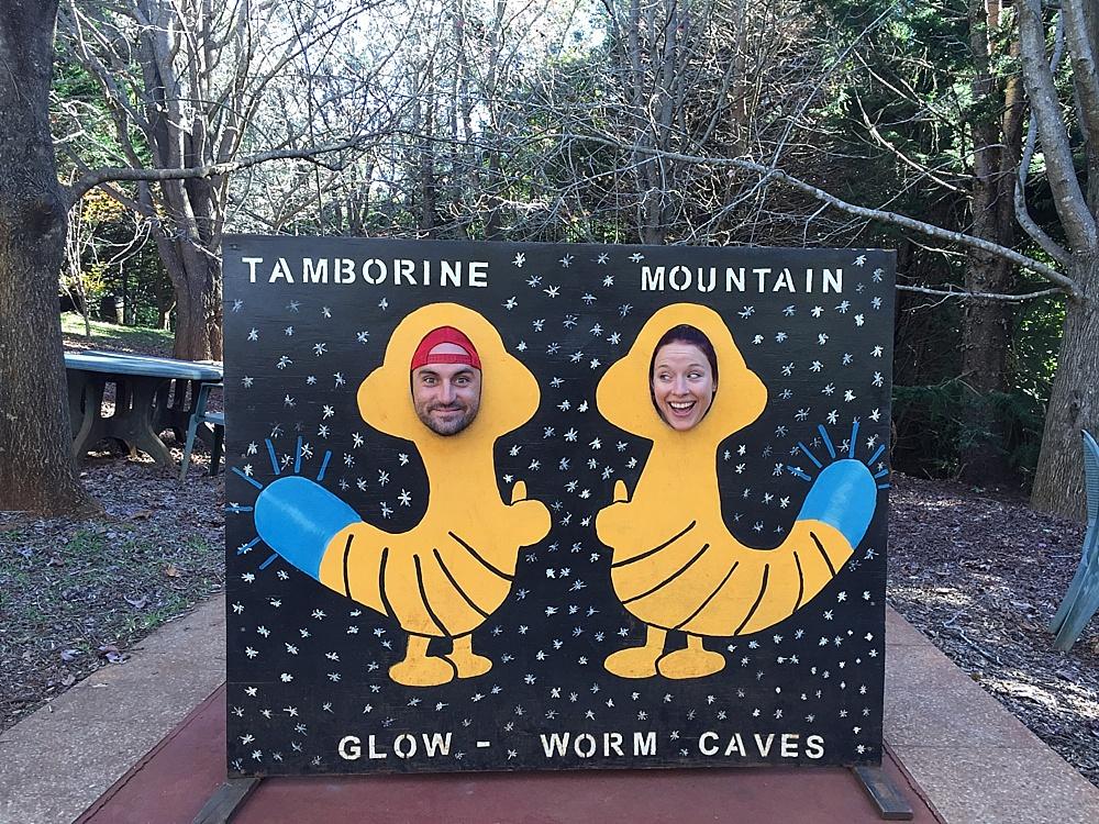 glow worm caves gold coast