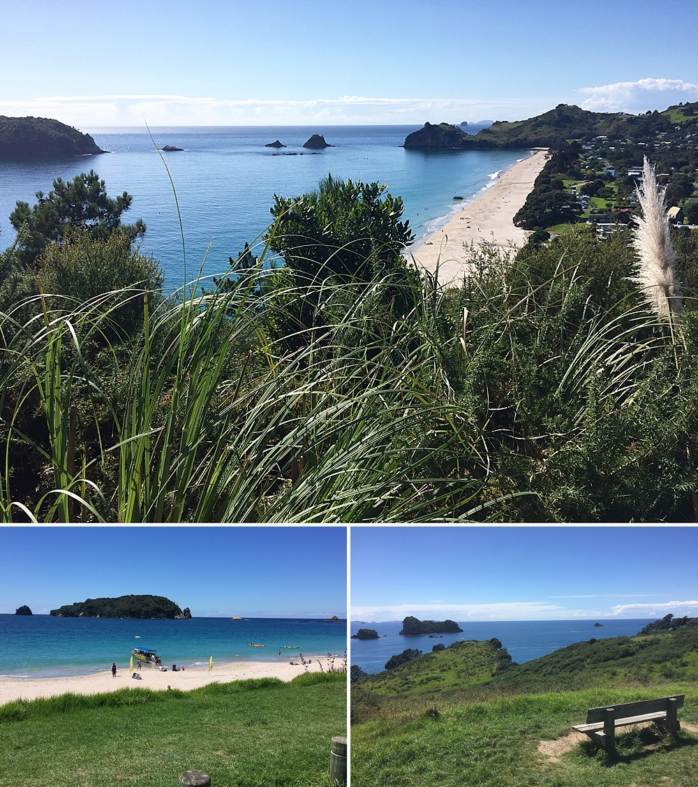 cathedral cove walk information