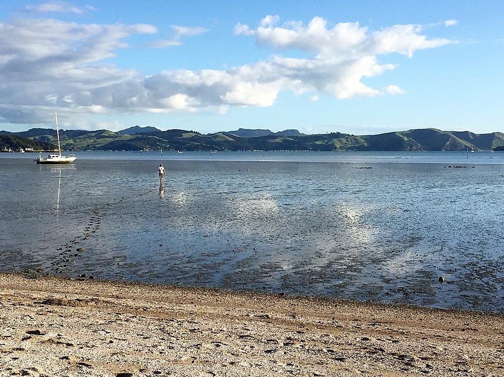 coromandel peninsula beaches