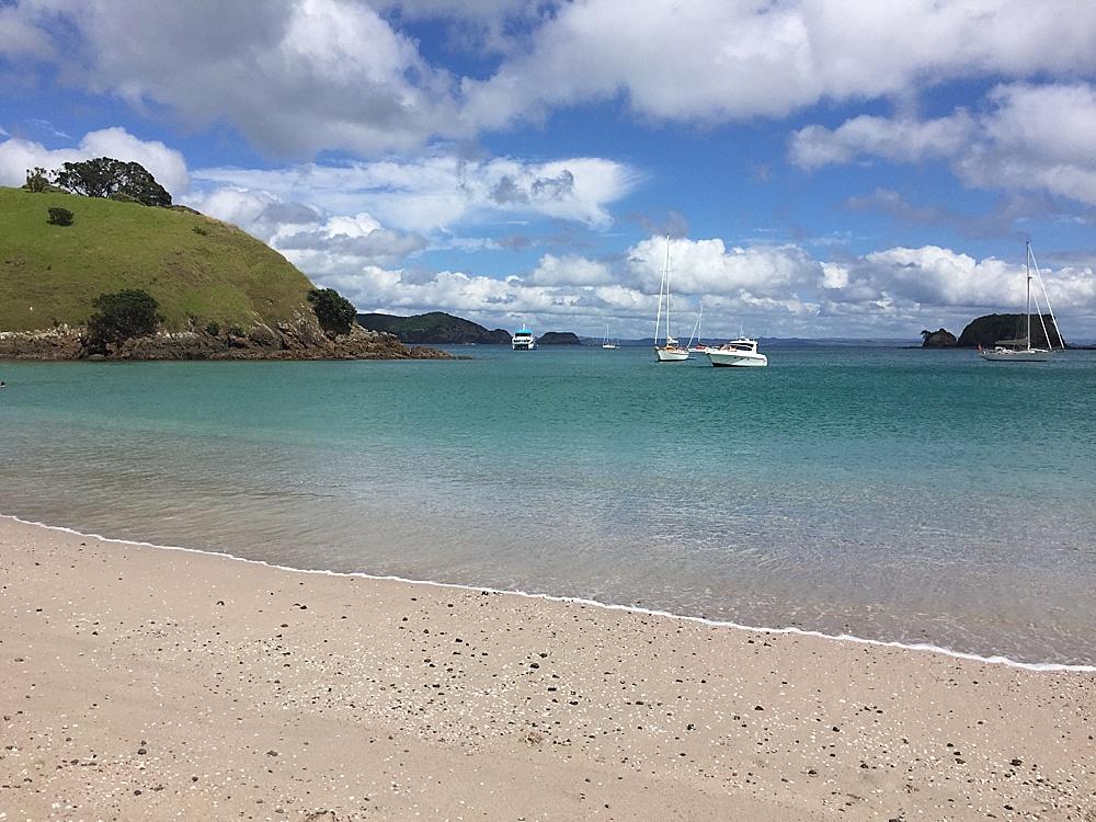 bay of islands top activities