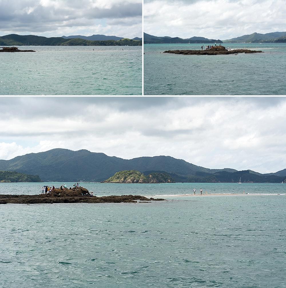 road trip bay of islands one week