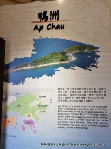 HK : 霧鎖中的鴨洲與吉澳 – 漂泊中的魚