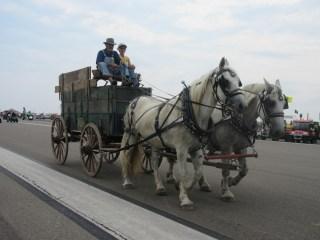 Horses at the Half Century of Progress
