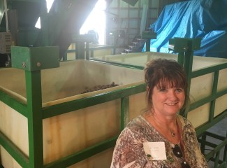 A Tour of Voss Pecans Top Ten Things I learned!