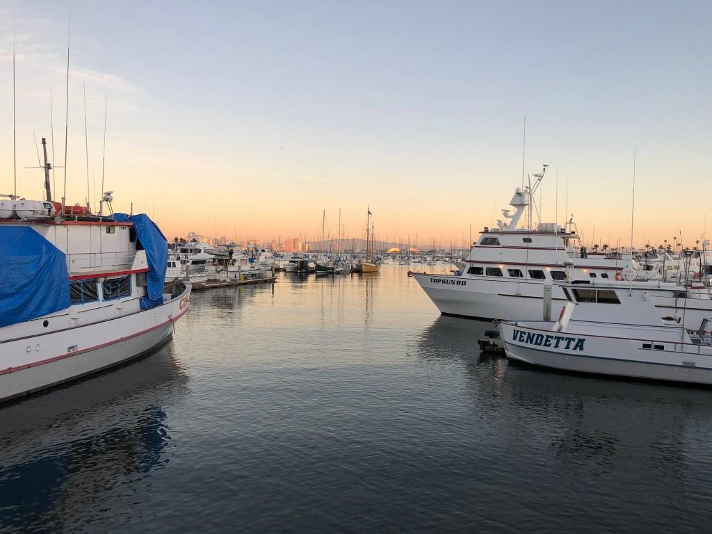 Outdoor San Diego @visitSanDiego #travelingadventuresofafarmgirl #SanDiegoBay #whalewatch