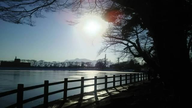 盛岡市、冬の高松の池の景色