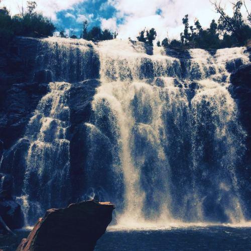 メルボルンからグランピアンズ国立公園ツアーに参加!