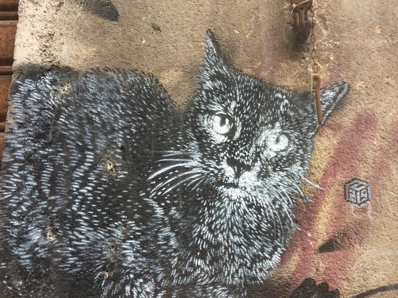 The Cat by C215