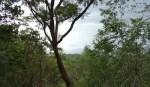 Mount Jerai Mischief