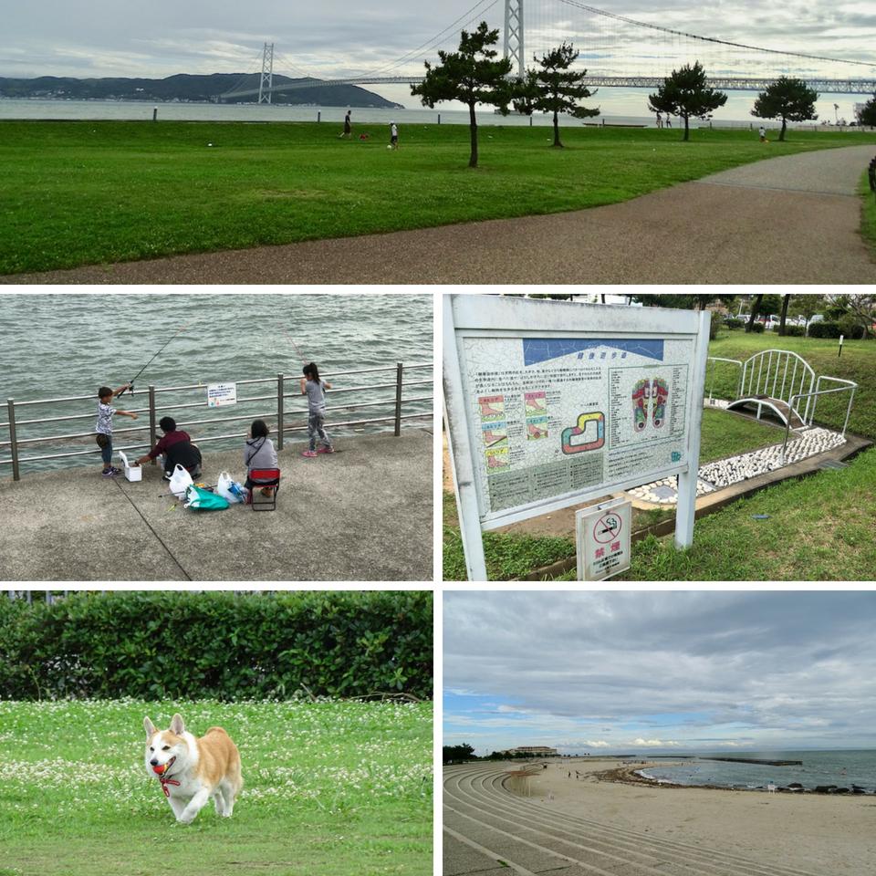 The Tarumi seaside trail