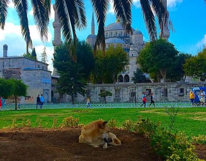 Istanbul, Turkey.. You Have to Go