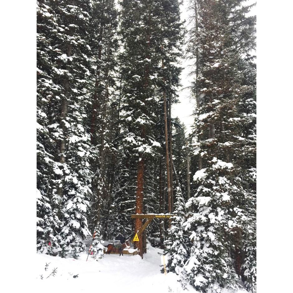 best skiing aspen