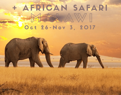 yoga retreat africa