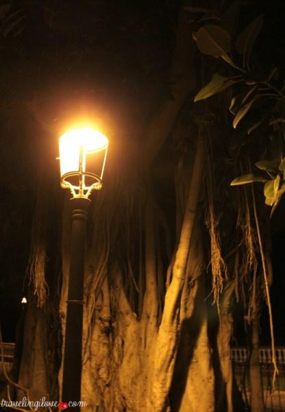 Icod de los Vinos by night (18)