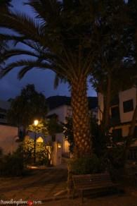 Icod de los Vinos by night (9)