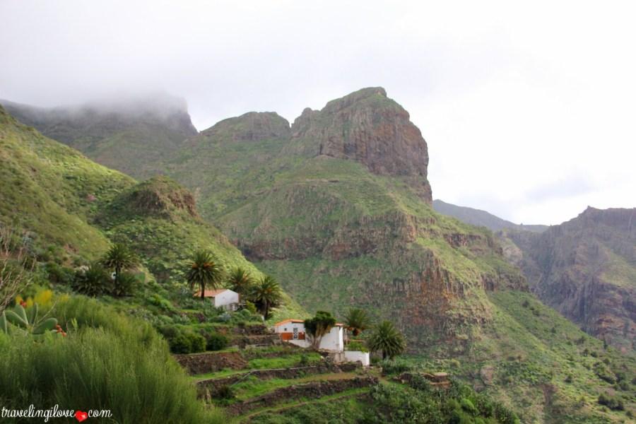 Masca, Tenerife (6)