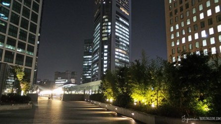 Shiodome by night