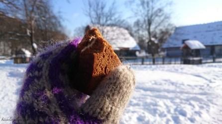 Skansen Sanok winter (1)