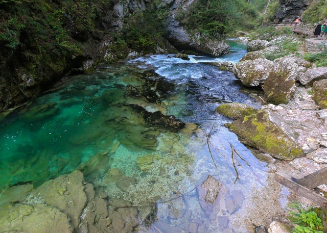 The clear waters of Vintgar Gorge. by @travelingintandem