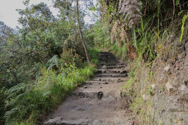 Machu Picchu steps 2