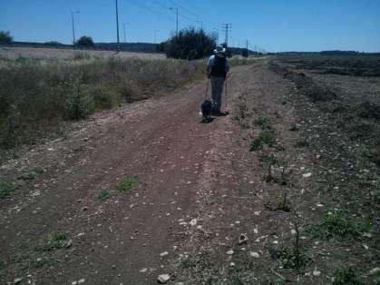 אדם וכלבו - בשביל המקביל לכביש 1