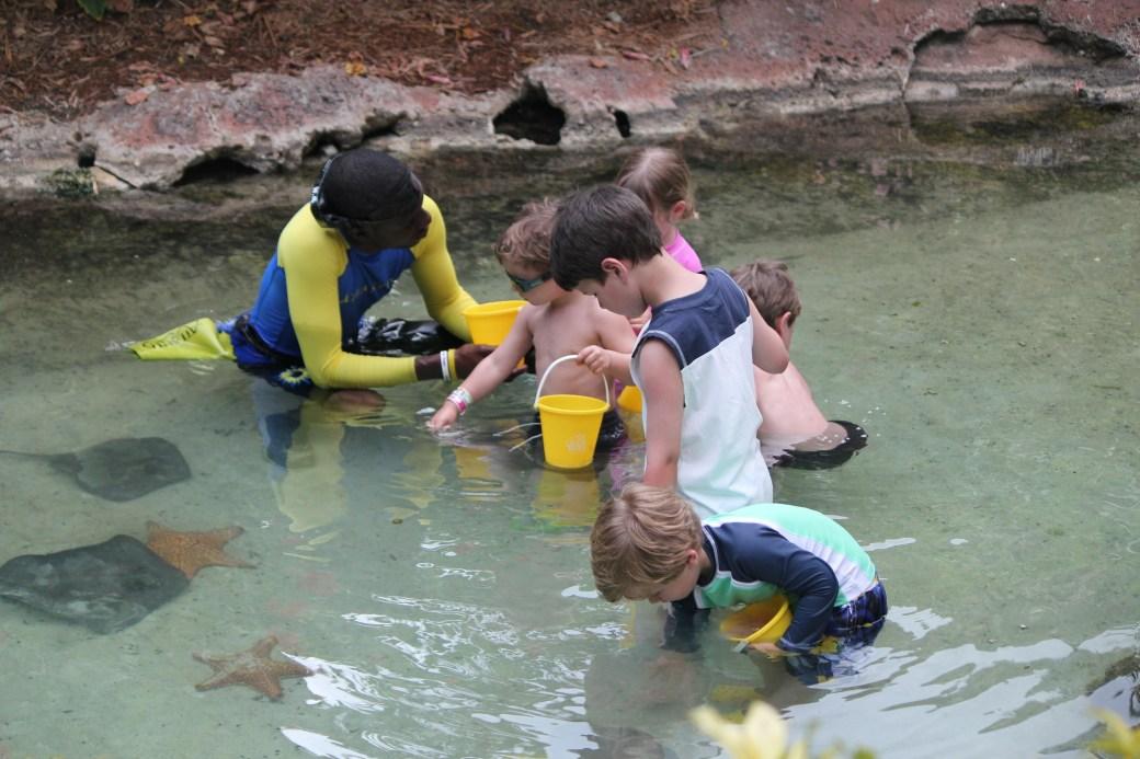 Children with Starfish; Paradise Island, Bahamas; 2011