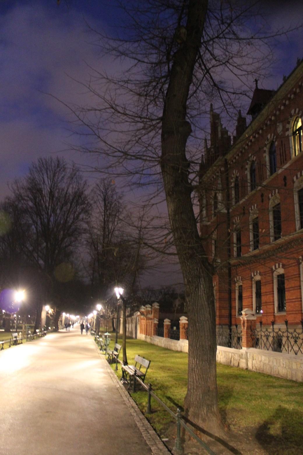 The Park at Night; Krakow, Poland; 2011