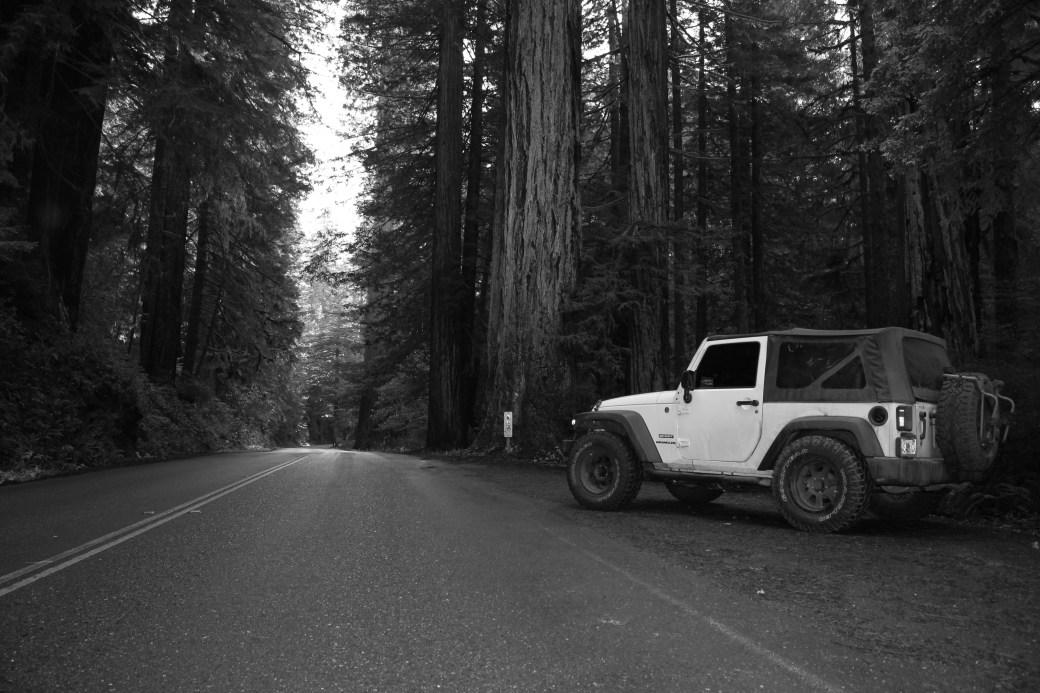 Oakley Jeepin' California Redwoods; 2013