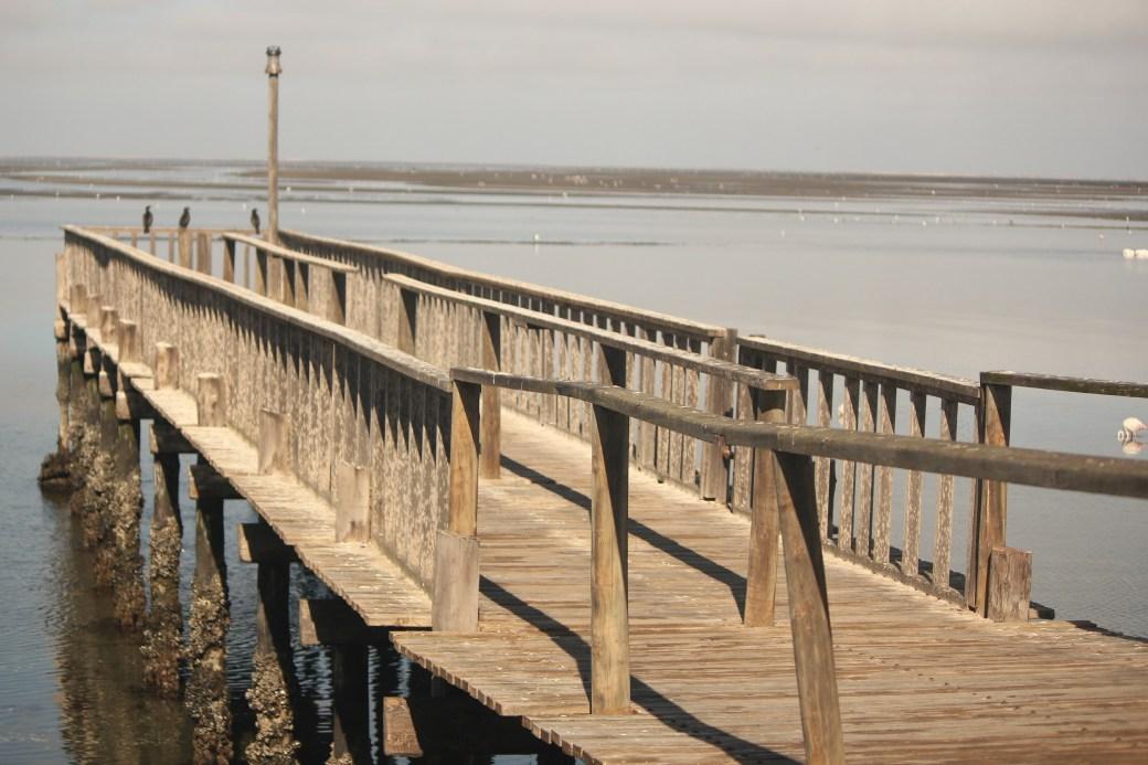 Walvis Bay Dock; Walvis Bay, Namibia; 2013