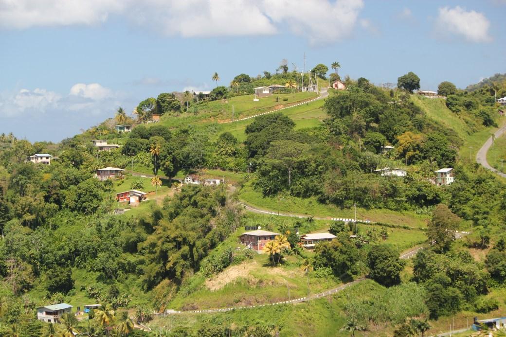 Mountain View; Tobago; 2011