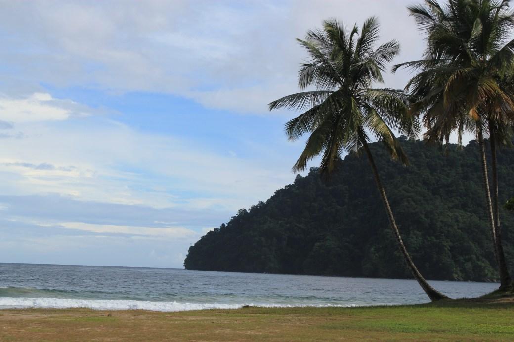 Paradise; Trinidad; 2011