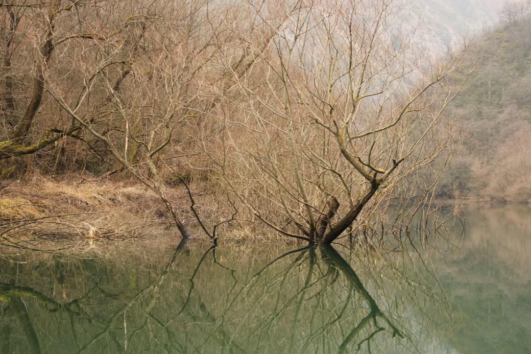 Reflection on the Lake; Matka, Republic of Macedonia; 2013