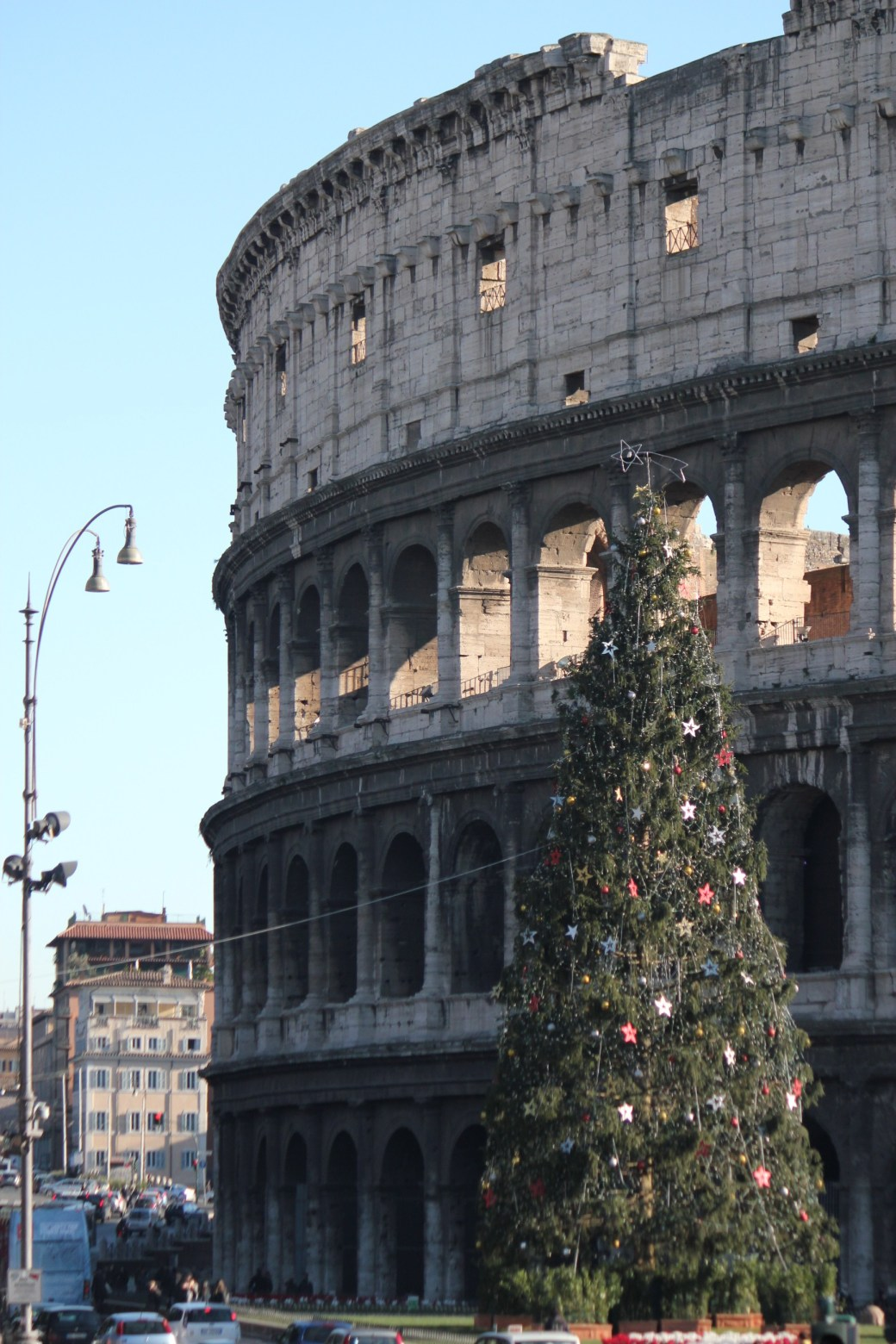 A Christmas Tree and the Colosseum; Rome, Italy; 2011