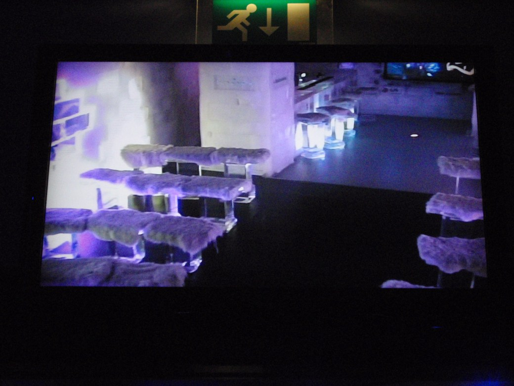 Sneak Peak of Ice Bar; Amsterdam, Netherlands; 2010