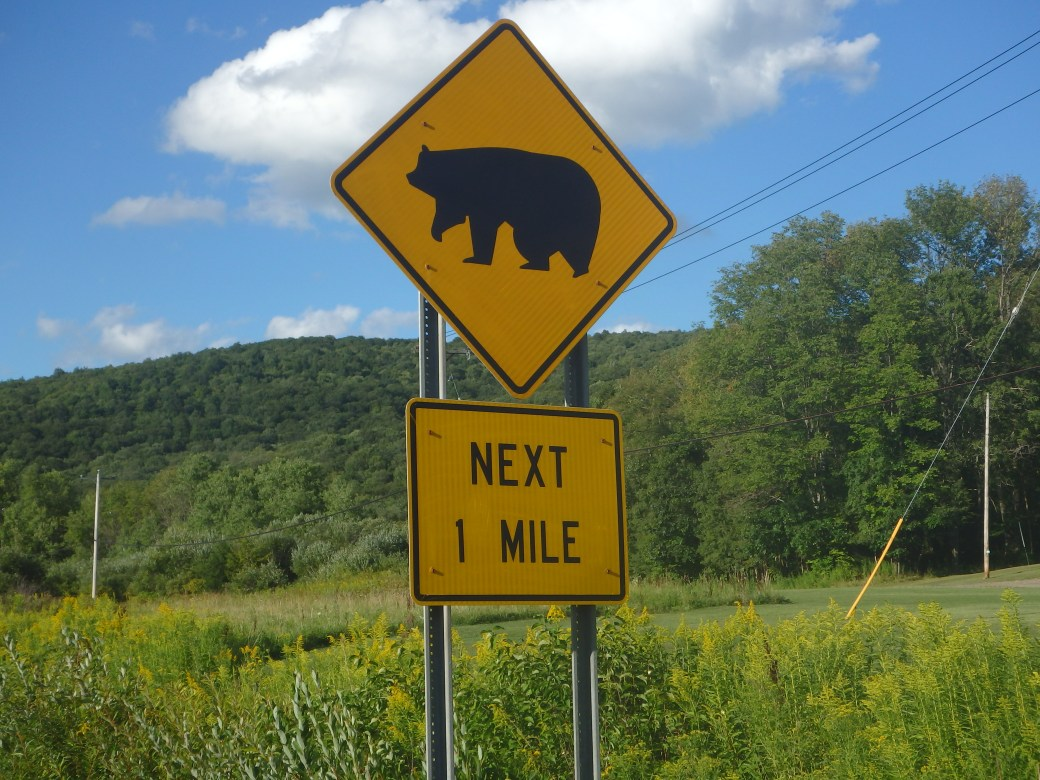 Beware of Bears; Maine, USA; 2015